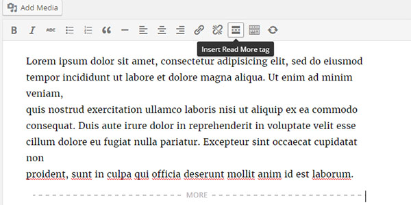 Add Continue Reading button with thumbnail image in teaser box(Home page) of thesis theme
